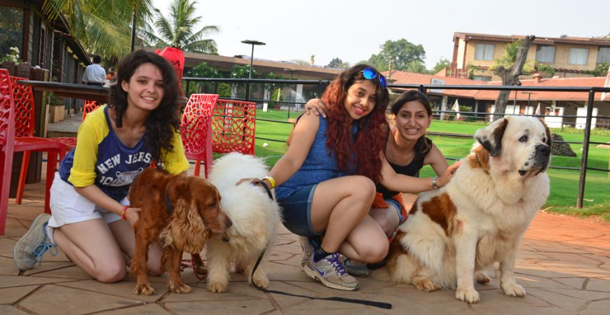 Treat your loyal pets to a fabulous vacation at Della